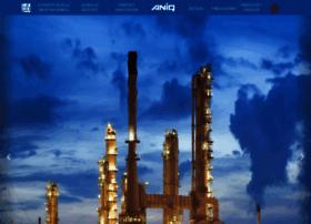 aniq.org.mx