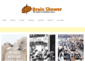 brainskewer.com