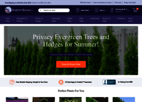 brighterblooms.com