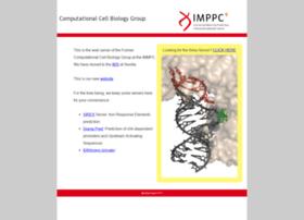 ccbg.imppc.org