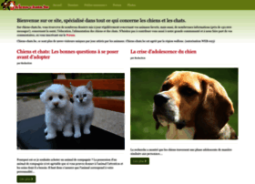 chiens-chats.be