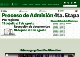 cobaep.edu.mx