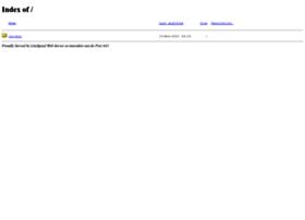 interaktiv-net.de