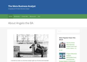 metabusinessanalyst.com