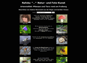 nafoku.de