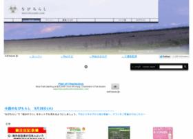 navichirashi.com