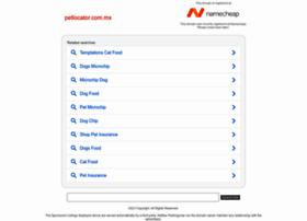 petlocator.com.mx