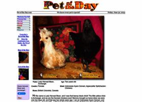 petoftheday.com