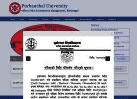 puexam.edu.np