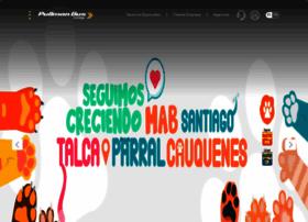 pullmanbus.cl