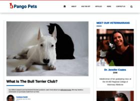 thebullterrierclub.org