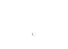 turknippon.com