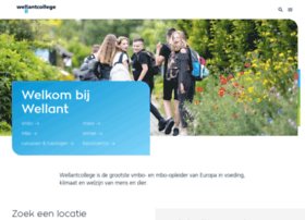wellant.nl