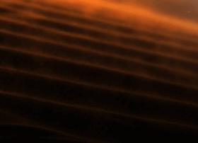 wilderness-safaris.com